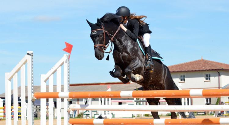 Salto di un ostacola a cavallo